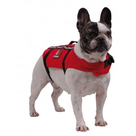 Chaleco salvavidas para perro